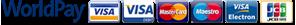 worldpay logo icon